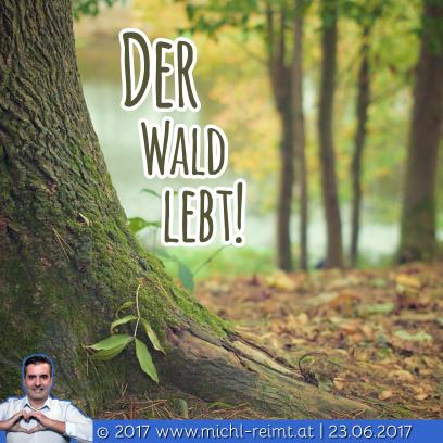Gedicht: Der Wald lebt!