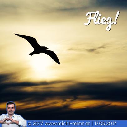Gedicht: Flieg!